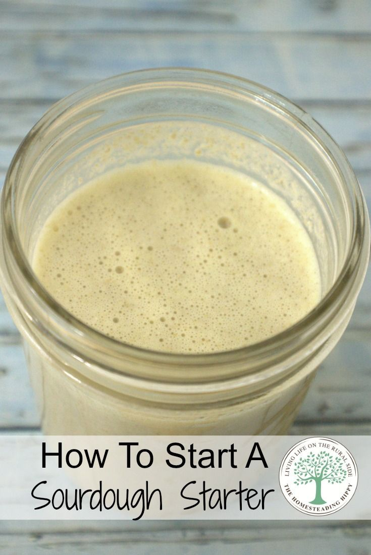 Making your own breads without commercial yeast is fun and easy to do once you…