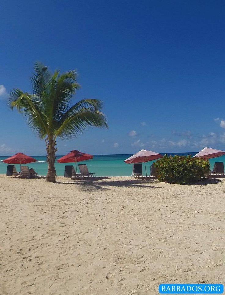 Another beautiful sunny day at Dover Beach on the south coast of Barbados.