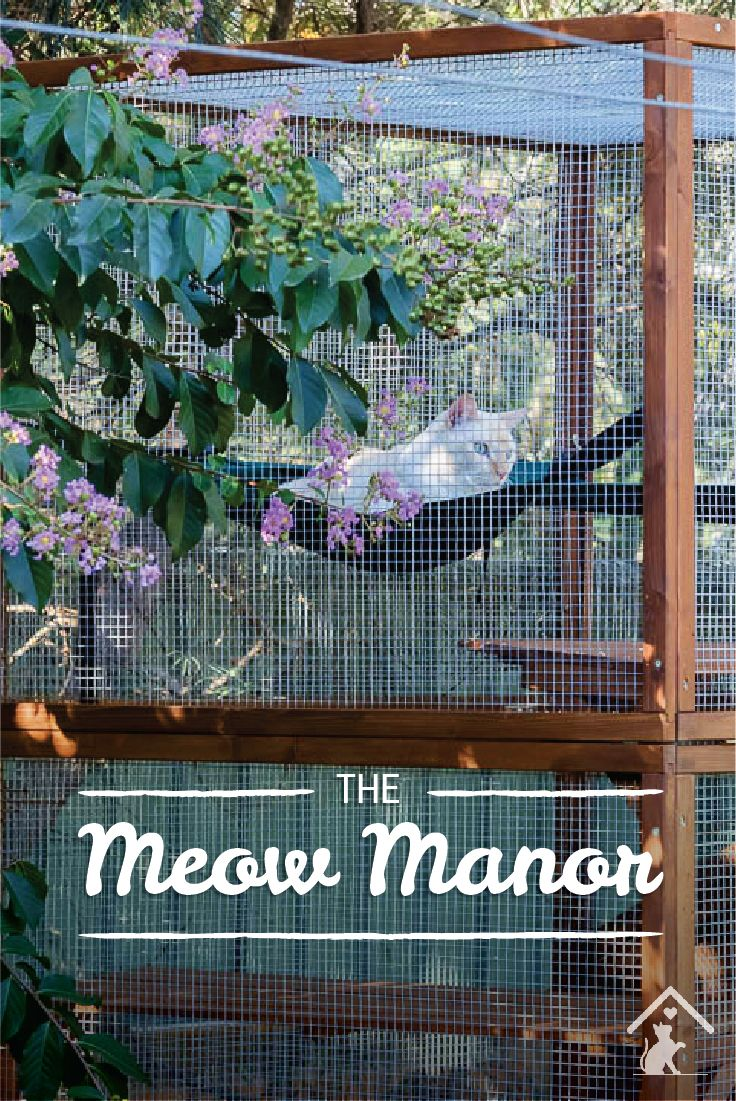 Spoil your kitty with their very own Meow Manor. Your cats will love playing and lounging about in this pawesome enclosure! Click the image to find out more. #meowmanor #outdoorcatenclosures #backyardcatenclosures