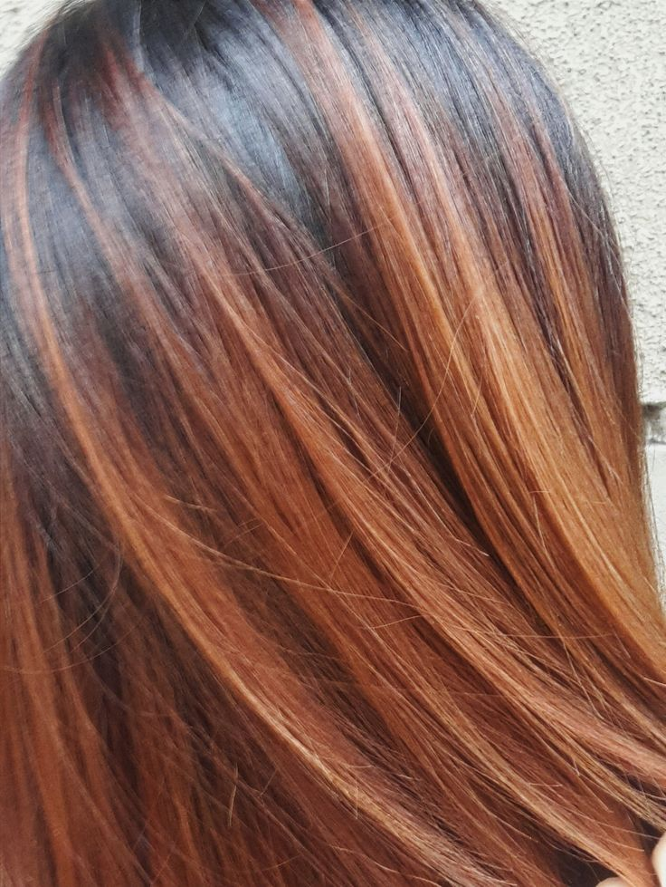COLORMELT #mscsajkovszkyhair