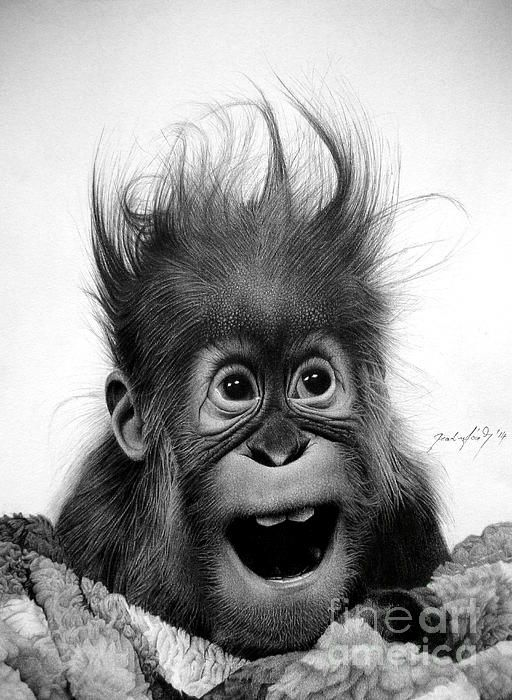 Congratulations on 2nd Place #Win in the Make Me Smile #Contest - Don't Panic by Miro Gradinscak