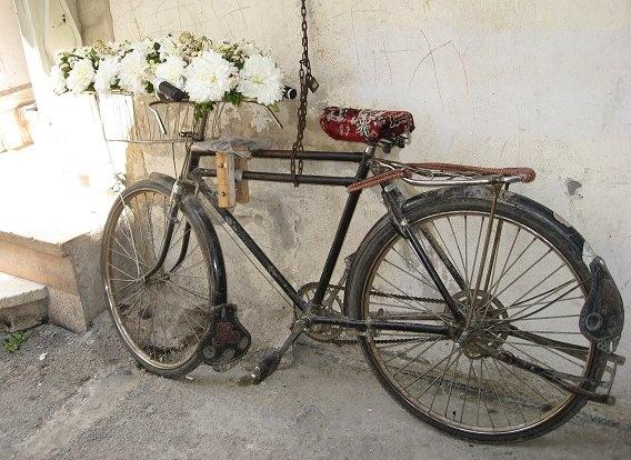 Bloemen houden van fietsen