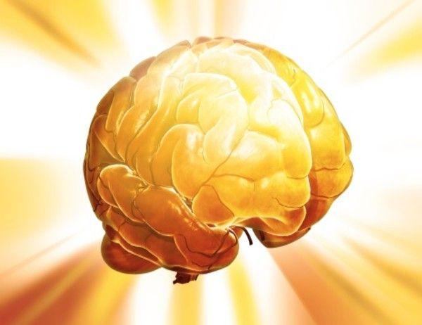 Un equipo de investigadores del Instituto Tecnológico de Massachussetts (MIT) ha descubierto de qué forma el cerebro humano es capaz de absorber y de analizar rápidamente nueva información, lo que llamamos aprendizaje. El estudio ha sido publicado en la revista Neuron.