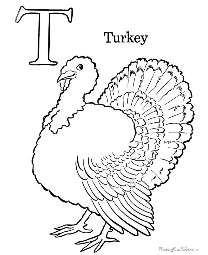 preschool coloring page of thanksgiving turkey 008