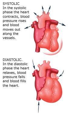 Meaning of Systolic and Diastolic | What is the difference between systolic and diastolic blood pressure?