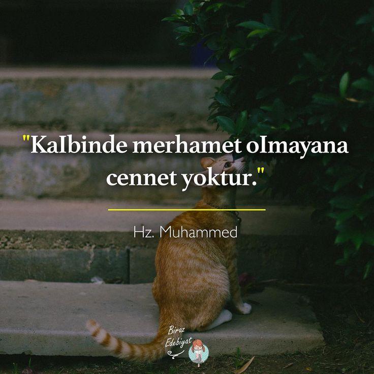 Kalbinde merhamet olmayana cennet yoktur. - Hz. Muhammed (Kaynak: Instagram - birazedebiyat) #sözler #anlamlısözler #güzelsözler #manalısözler #özlüsözler #alıntı #alıntılar #alıntıdır #alıntısözler #şiir #edebiyat