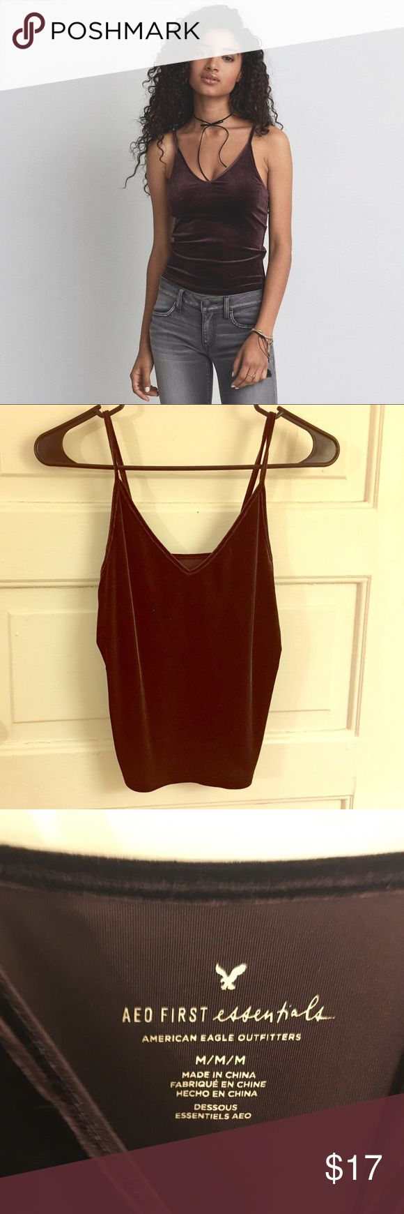 American Eagle Outfitters Velvet Tank Burgundy American Eagle Outfitters velvet tank top in size medium. Great condition, worn once. American Eagle Outfitters Tops Camisoles