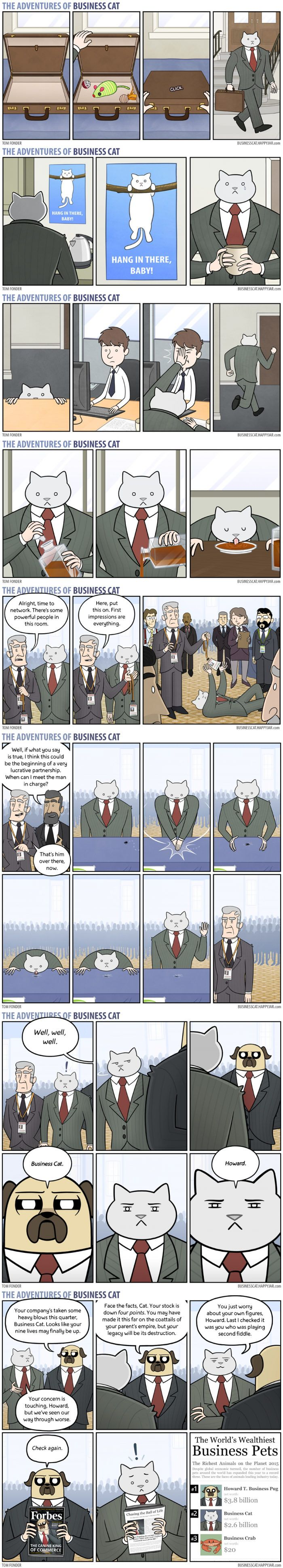 Business Cat Part 4 - 9GAG