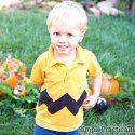http://simplepracticalbeautiful.com/great-pumpkin-charlie-brown/