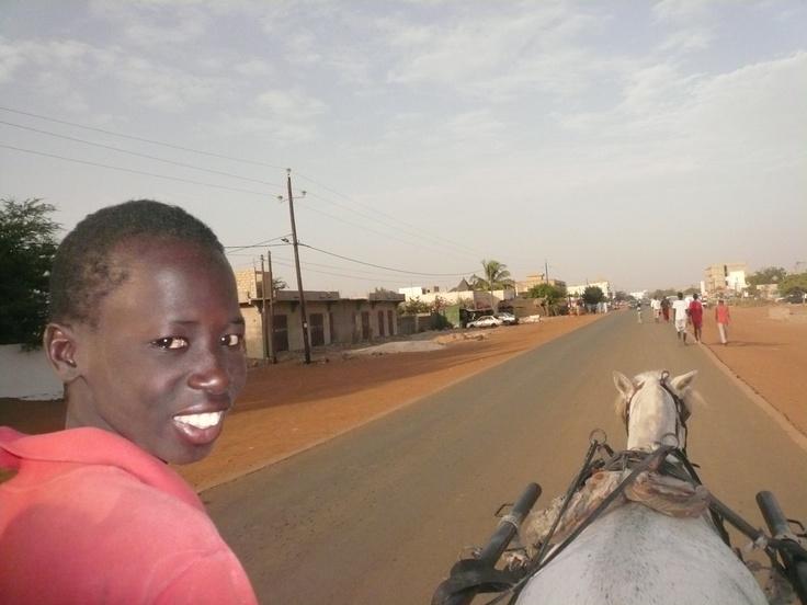 Momo sur sa charrette