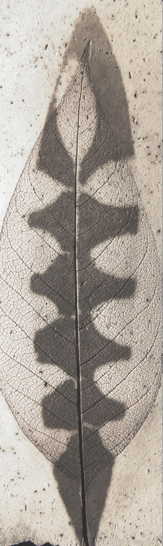 Archetipo - Impressioni Ceramica by Giovanni Maffucci
