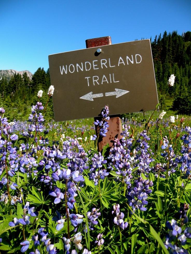 Complete the full Wonderland Trail around Mt. Rainier