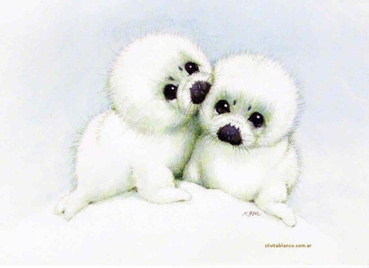 Focas arpa especie en peligro de extinción La caza de focas es una actividad consistente en la obtención de recursos a partir de focas cachorros