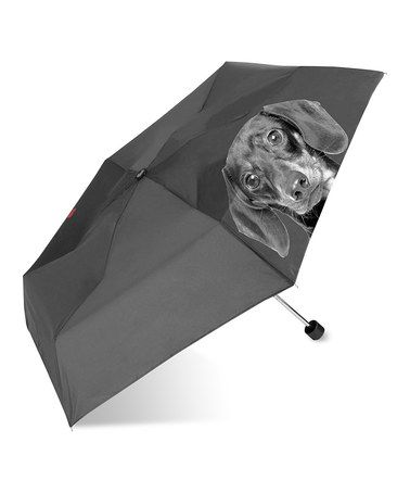 Take a look at this Black Dachshund Umbrella by FuzzyNation on #zulily today!