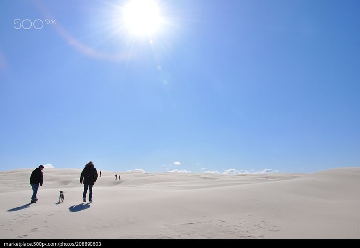 Walking on Råbjerg Mile  High resolution model: https://500px.com/photo/208890603  © Rau Hartmann Galaxy  #photography #sky #travel #blue #sun #light #clouds #waves #dog #summer #beautiful #sand #desert #silhouettes