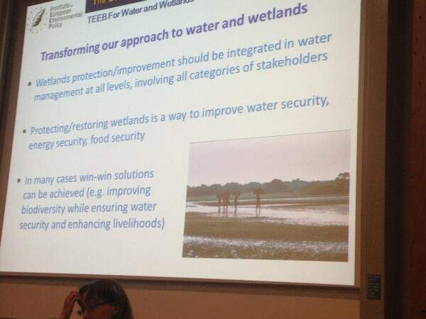 ESPA event- The Economics of Ecosystems and Biodiversity (TEEB): Water and Wetlands, Dr Daniela Russi, Policy analyst, Institute for European Environmental Policy (IEEP).
