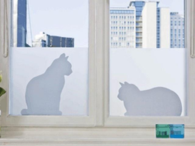 Meer privacy met: Glasfolie Poes - Een origineel kado idee met Kado om de Hoek