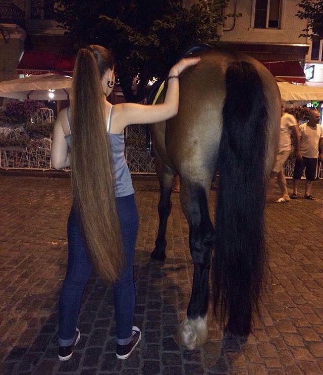A Girl's Horse