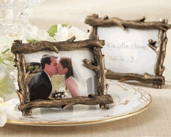 These frames go perfect with our theme. Maybe for table numbers/name plates