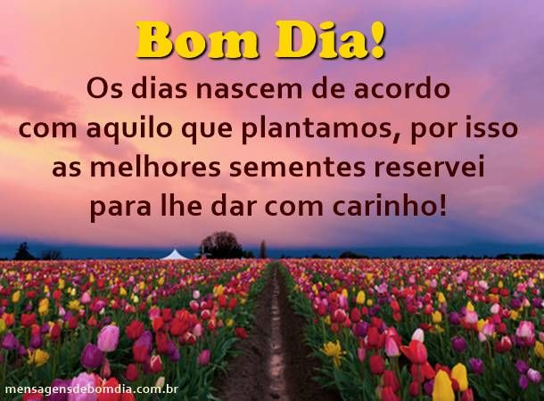 134 Best Images About Bom♦Dia‼ On Pinterest