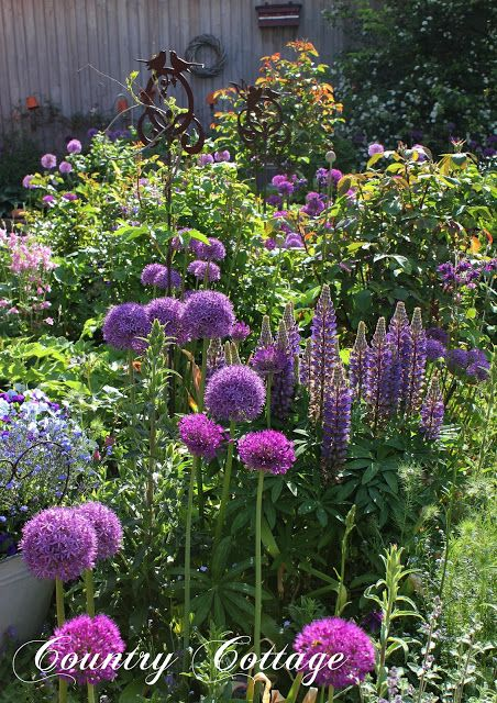 Working in the garden gives me something beyond the enjoyment of senses. It gives me a profound feeling of inner peace.   -Ruth Stout-