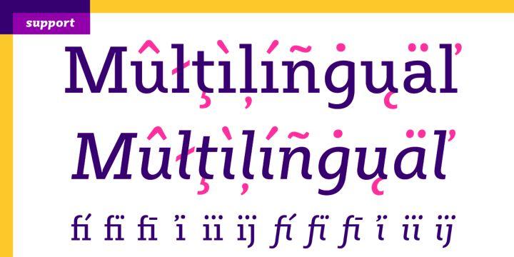 Sybilla - Webfont & Desktop font « MyFonts