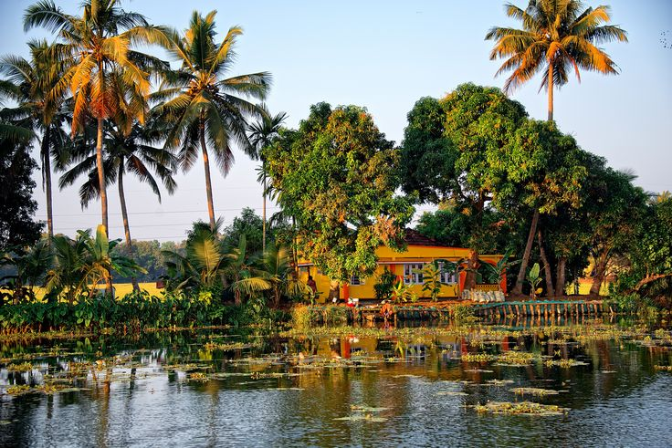https://flic.kr/p/nTsQR3 | House along the river at Alleppey Backwater, Kerala, India