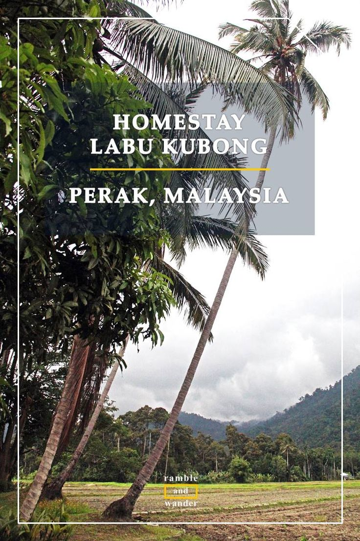 Travel like a local? Why not live like a local instead? You can get the best of this experience at Homestay Labu Kubong in Perak, Malaysia. Here's why...   http://www.rambleandwander.com/2017/06/malaysia-homestay-labu-kubong-perak.html