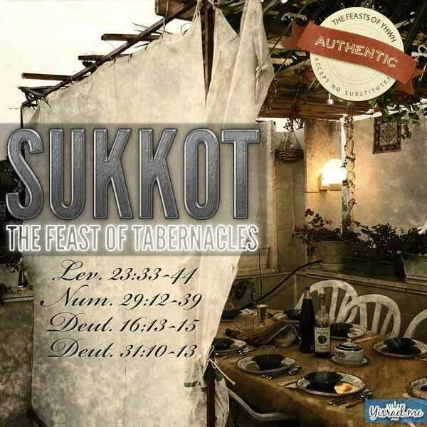 18 Best Sukkot Images On Pinterest Feast Of Tabernacles Party And