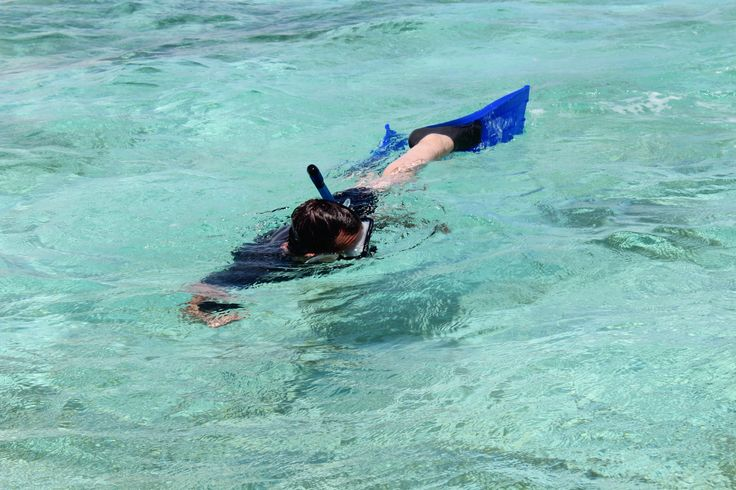 Snorkeling in Belize at Turneffe Atoll. #chabilmar #snorkelingphotos #photosofbelize #belize #placencia #centralamerica #turneffeatoll #atoll #snorkelinginbelize #divebelize