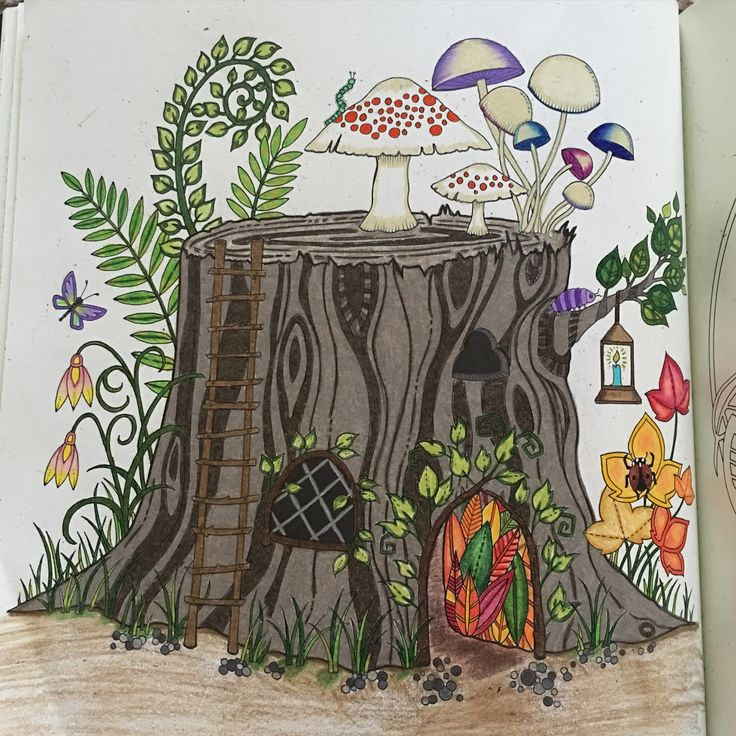 Review Enchanted Forest An Inky Quest Amp Coloring Book
