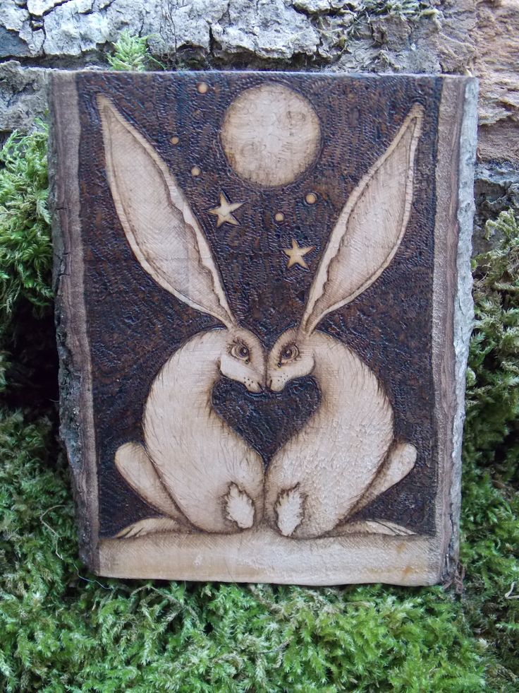 awww true love heart hares xxx for more hares see my facebook page salixpyrography