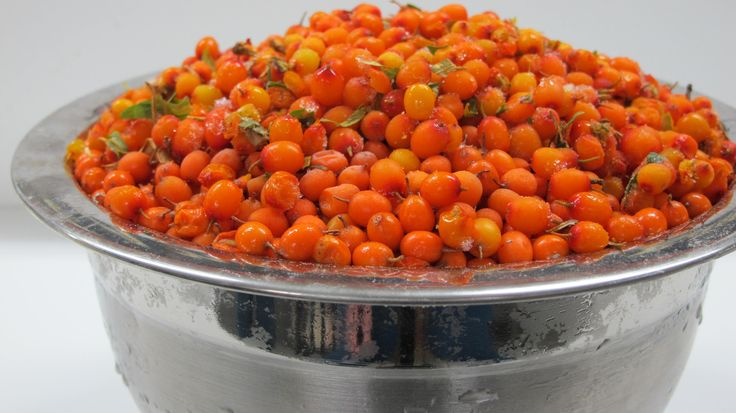 All SBT Seabuckthorn Oils are derived from the highest quality, organic, wild crafted berries available.