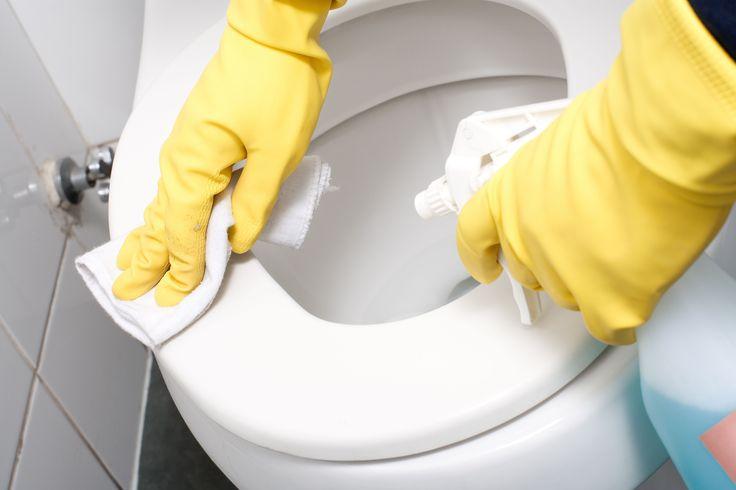 Tout ce qu'il faut savoir sur l'entretien des WC