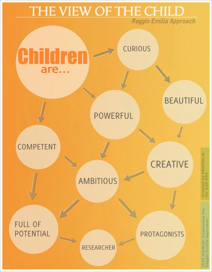 Reggio Emilia's View the Child infographic from the text Examining the Reggio Emilia Approach