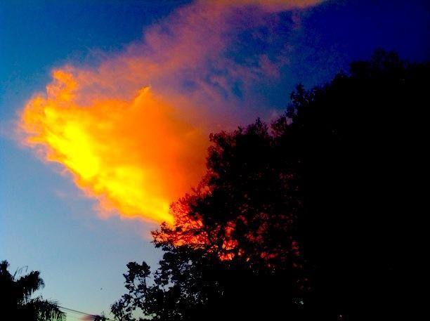 Golden cloud, Pretoria.