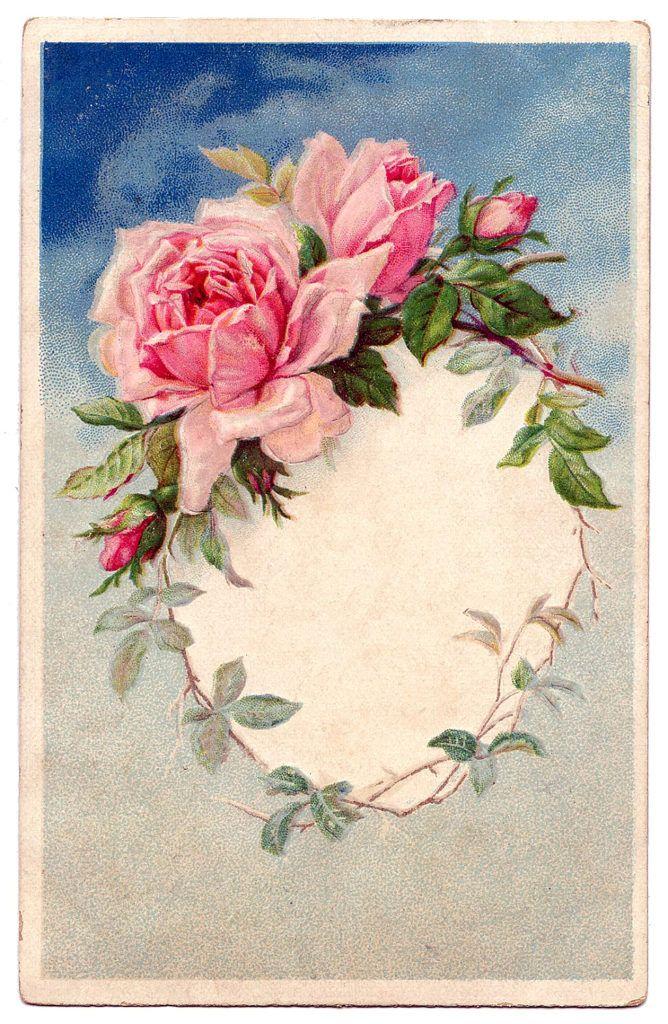 Розы винтаж открытки