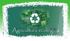 Asociación de cultivos en Agricultura ecológica
