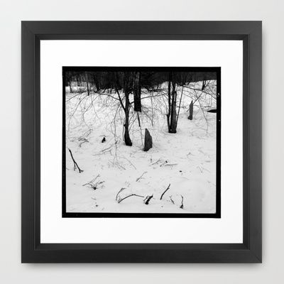 Norwegian forest Framed Art Print by Plasmodi - $33.00