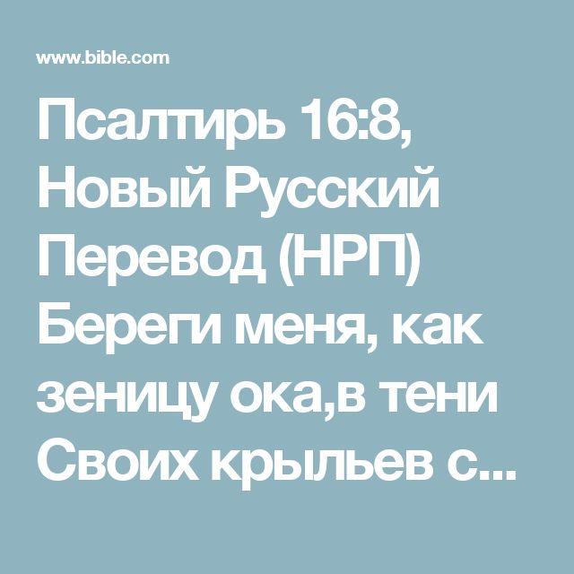 Псалтирь 16:8, Новый Русский Перевод (НРП) Береги меня, как зеницу ока,в тени Своих крыльев сохрани меня