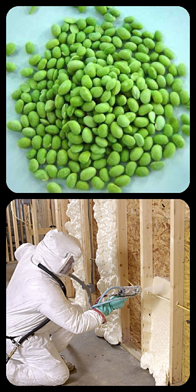 The Basics of Soy Insulation: What it is, what it isn't and why it might be a better choice for your insulation