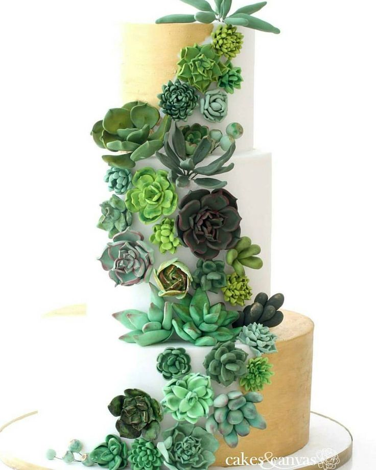 These Succulent Cakes Are Almost Too Pretty to Eat