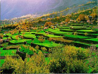 Pakistan Tourism: Explore Pakistan - Tour to Fairy Meadows │Nanga Pa...