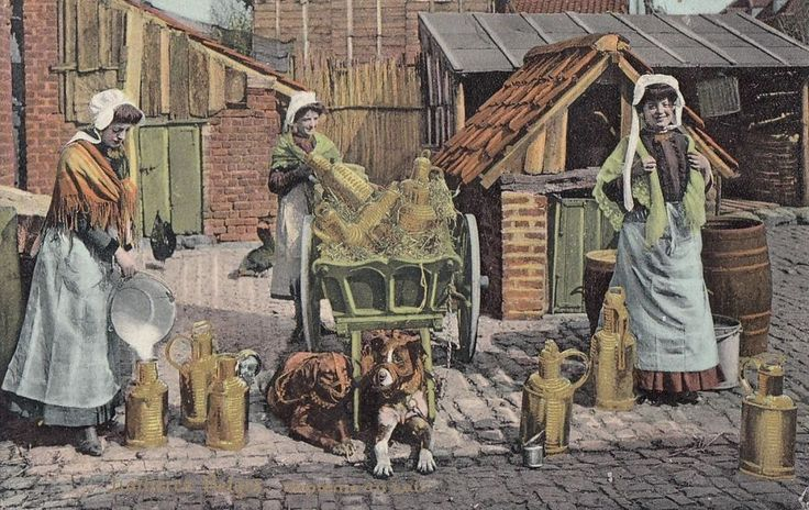 DOG:  Belgian Dog Milk Cart-Bapteme du Lait-VAN CORTENBERGH