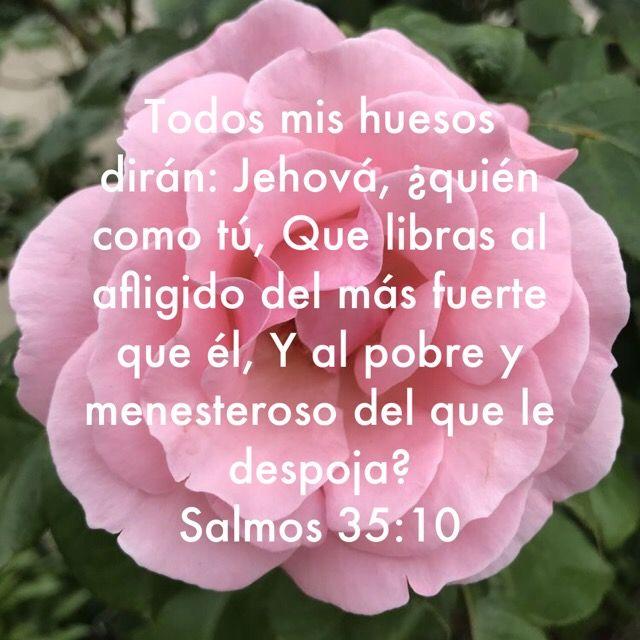 Pin De Blanca En Biblia Salmos 30 40 Jehova Dios