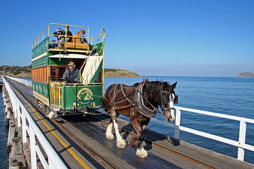 Flickr • horse drawn tram Victor Harbor • granite island
