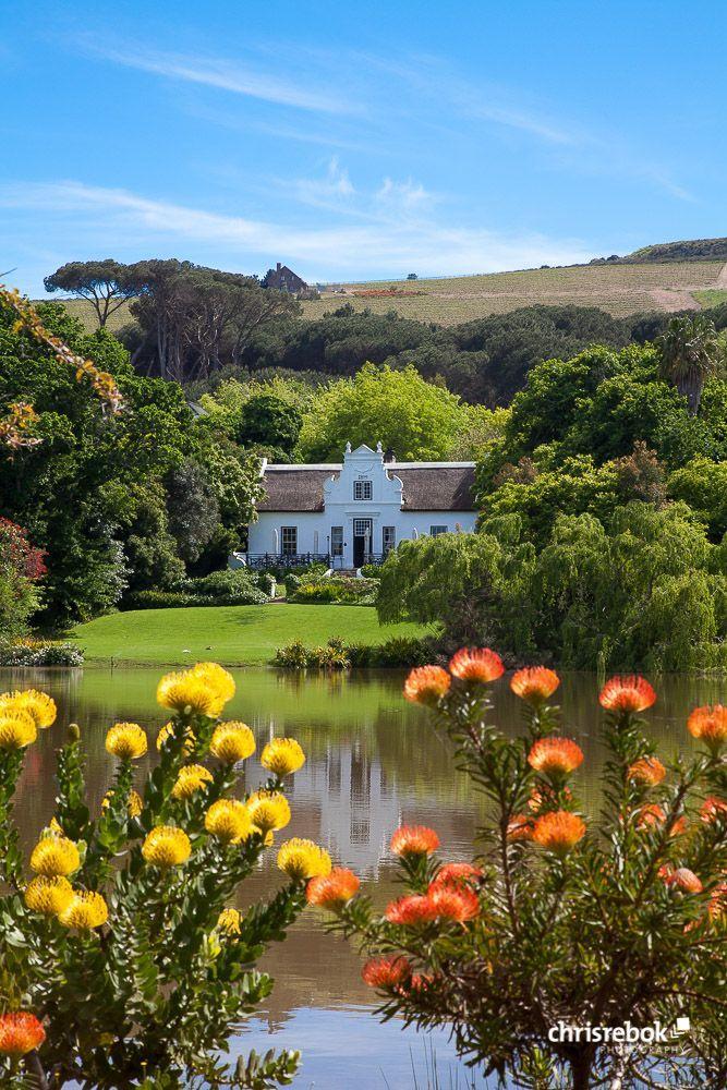 Zevenwacht Wine Estate, Stellenbosch, South Africa