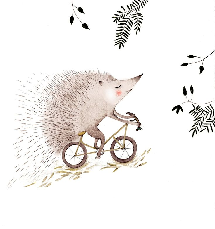 Here's an animated gif for Cristina Barsony's lovely illustration 'The Adventurous Hedgehog':