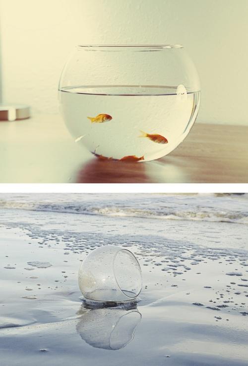 ber ideen zu goldfisch im glas auf pinterest bastelideen f r kinder gl ser und glas. Black Bedroom Furniture Sets. Home Design Ideas
