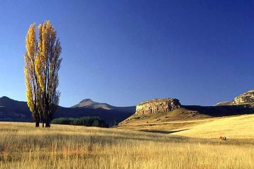 Clarens - South Africa